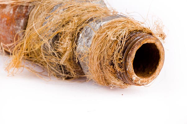 Reasons to Inspect the Sewer Lines of Older Homes