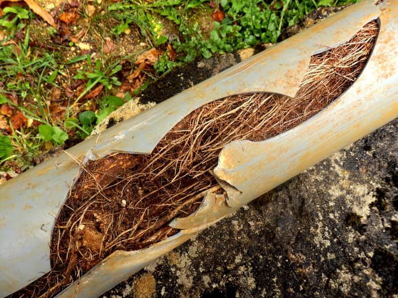 trenchless sewer repair in Marietta, GA